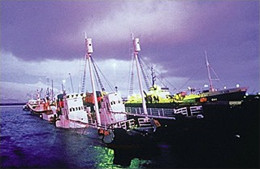 news_090527_1_iceland_whaling_vessels