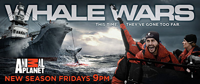 news_090605_1_whale_wars_season_2